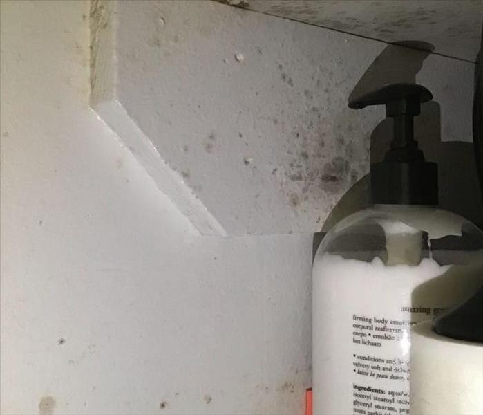mold damage to wall in a bathroom closet