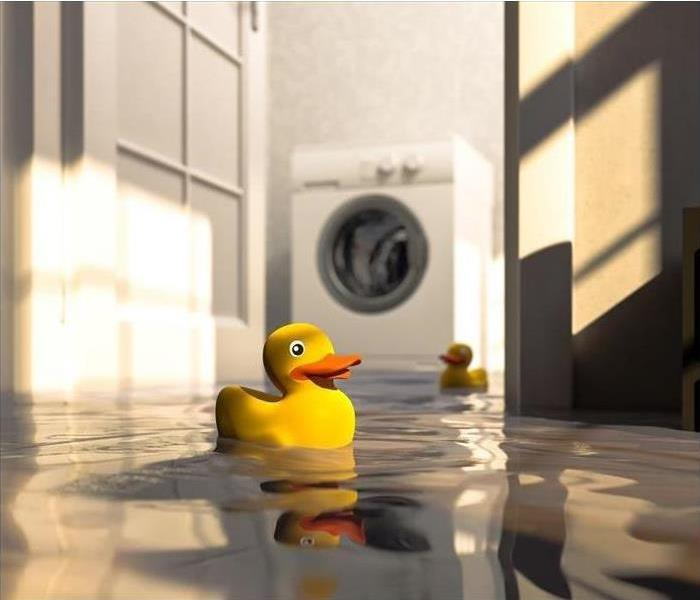 Flooded floor with floating rubber duck